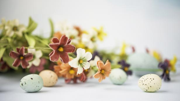 Easter still life in pastel colors with flowers and eggs