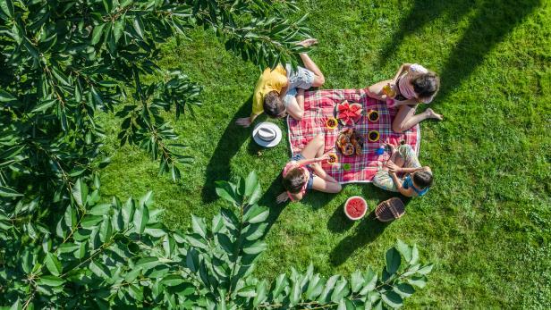 Lust auf Österreich_Picknick_Picknickplätze Wien